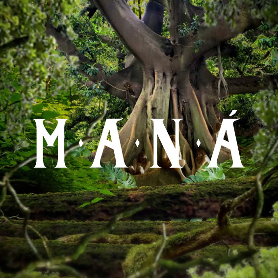 Mana – Rayando el Sol Tour Opening